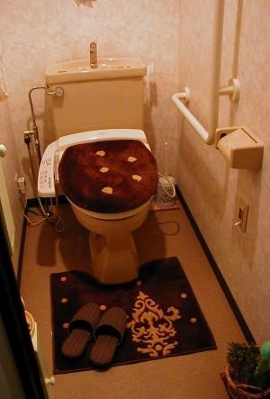 Toile15